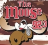Click image for larger version.  Name:MOOSE.jpg Views:3 Size:14.2 KB ID:234